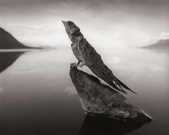 Удивительный феномен озера Нартон