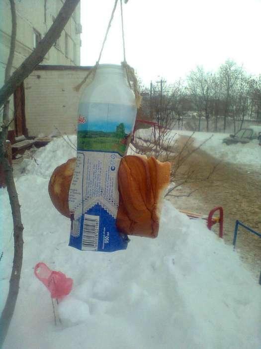 17 курьезных и позитивных фотографий из повседневной жизни россиян и их соседей