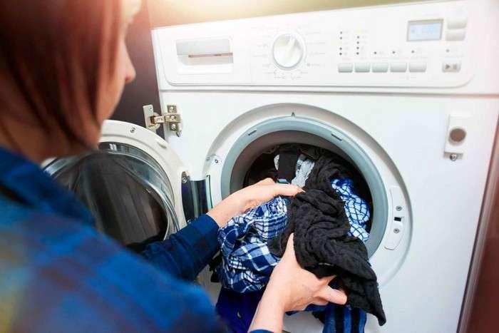 Как избавиться от моли без лишней -химии-, или 5 шагов к спасению гардероба