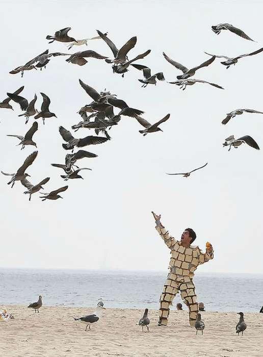 Фотографии, которые заставят усомниться в адекватности нашего мира (17 снимков)