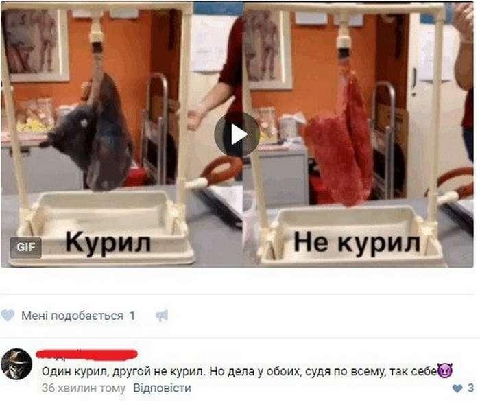 Забавные комментарии из социальных сетей (94 фото)