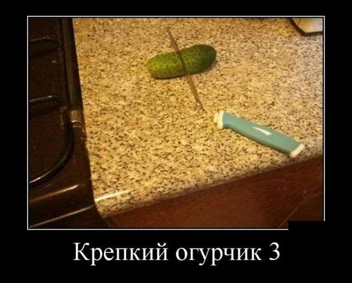 Пятничные демотиваторы 16.02.18