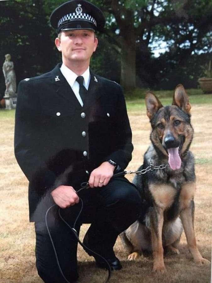 Финн &8212; суровый полицейский пёс