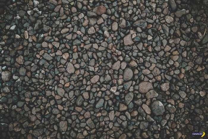 Директор принес в американскую школу ведра с камнями