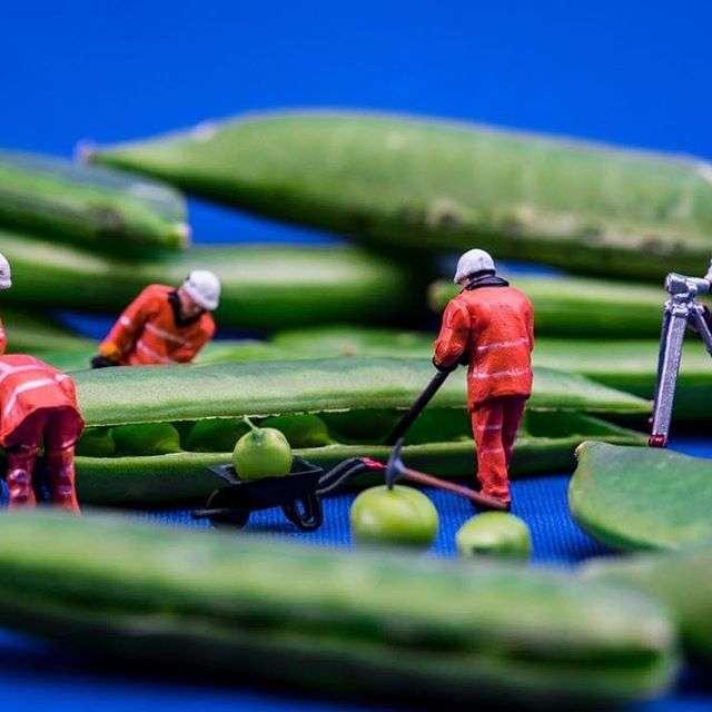 Удивительные микроскопические миры в работах художника