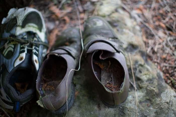 Таинственный лес, полный обуви