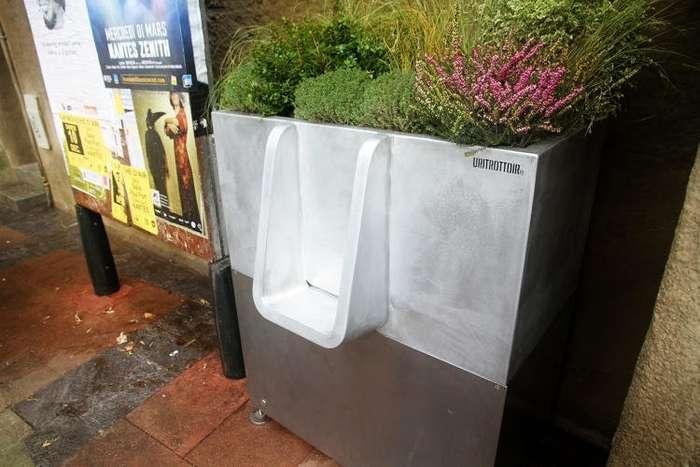 А что здесь такого? Общественные туалеты у всех на виду