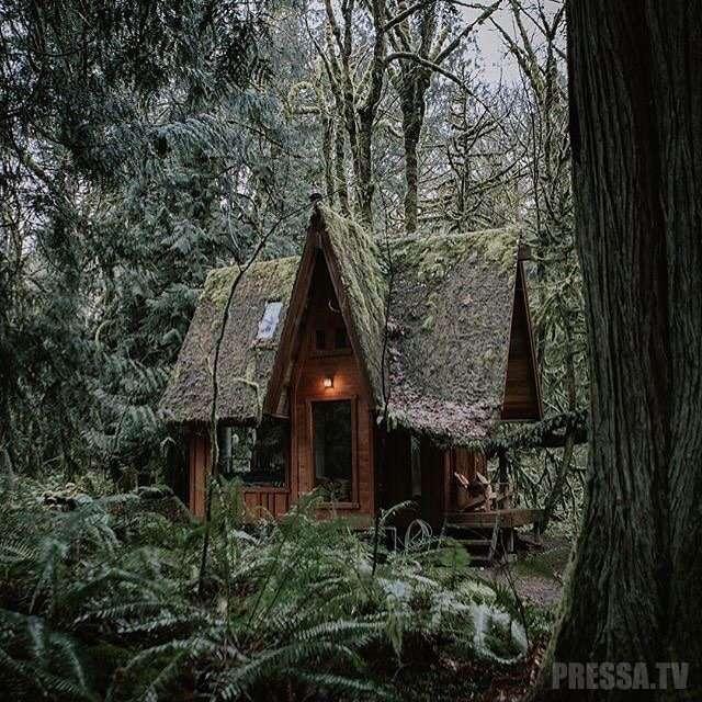 Необычное хобби: Мужчина строит сказочные хижины посреди леса