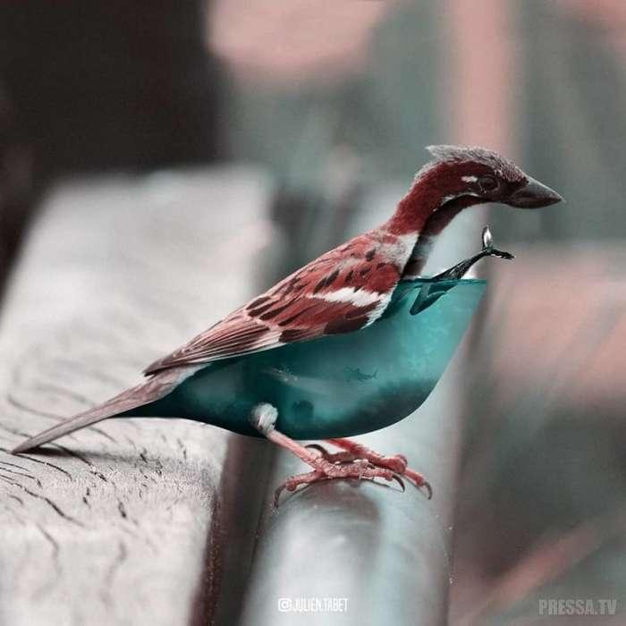 Фантастические животные в работах французского художника Жюльена Табета