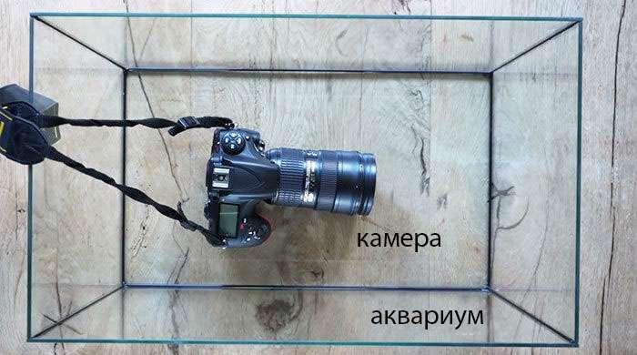Как стать гуру фотографии