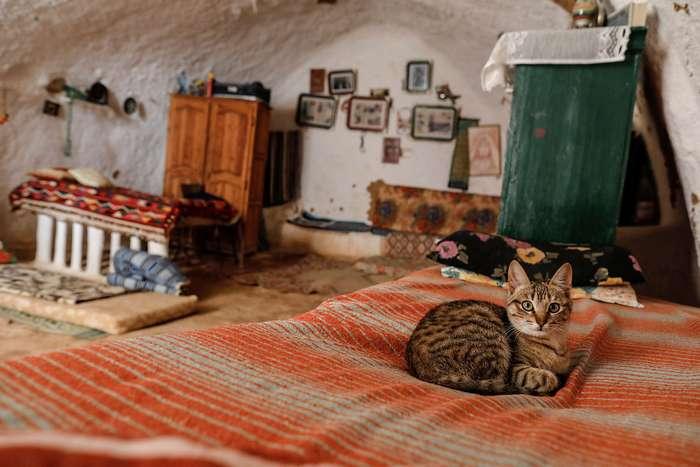 Тунисские подземные жилища