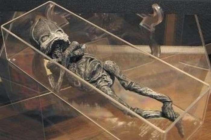 Мумии и скелеты: -Мумия инопланетянина- из Атакамы
