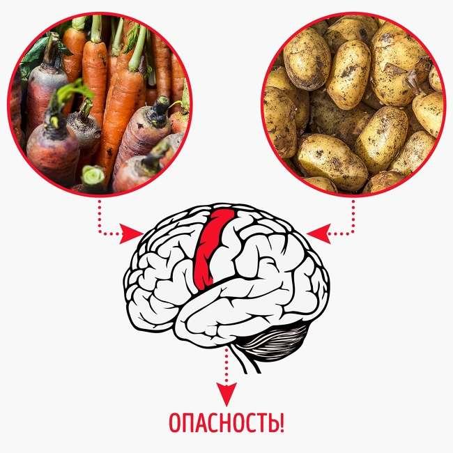 8научных причин, почему мылюбим вредную еду инелюбим полезную