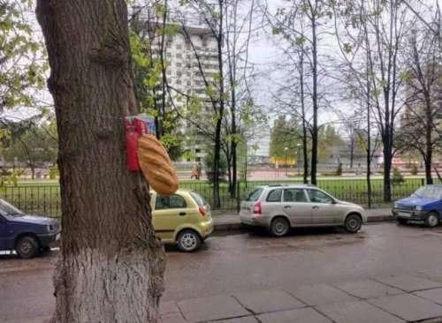 ТЕМ ВРЕМЕНЕМ В РОССИИ…