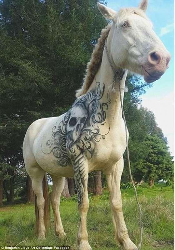 Тату-мастер дарит татуировки детям и лошадям