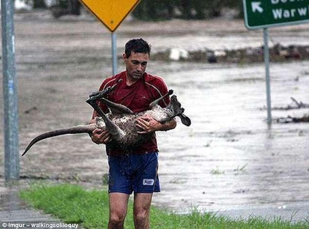 Эти снимки, рассказывающие о доброте и бескорыстии, растопят ваше сердце!