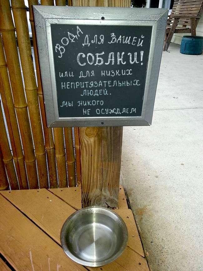 17 гениальных объявлений в кафе, мимо которых не пройти