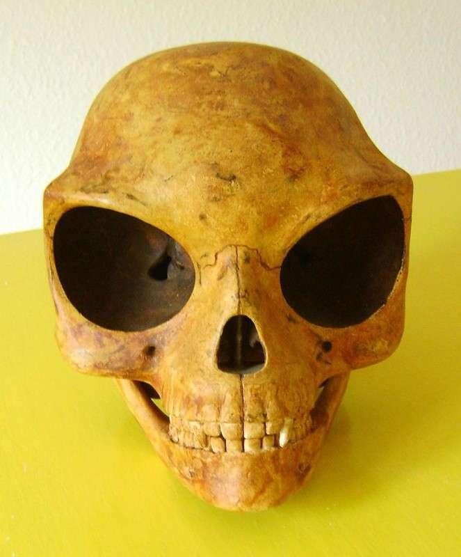Тайна Силендского черепа