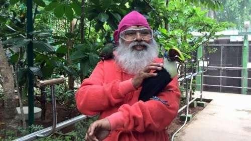 Повелитель птиц: мужчина из Индии посвятил свою жизнь спасению редких и вымирающих видов птиц