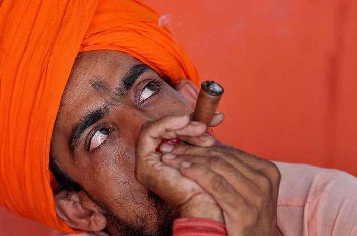 Фото из Индии, сделанные на прошлой неделе
