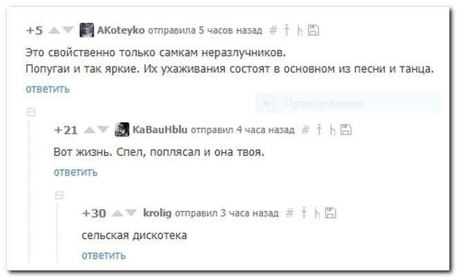 Забавные комментарии из социальных сетей (10.07.17)