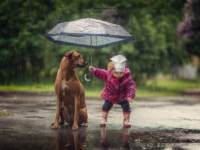 Очаровательные снимки детей и собак