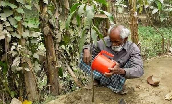Человек, в одиночку изменивший мир вокруг себя: бедняк посадил более 17 500 деревьев Запись входит в топ 200 рейтинга