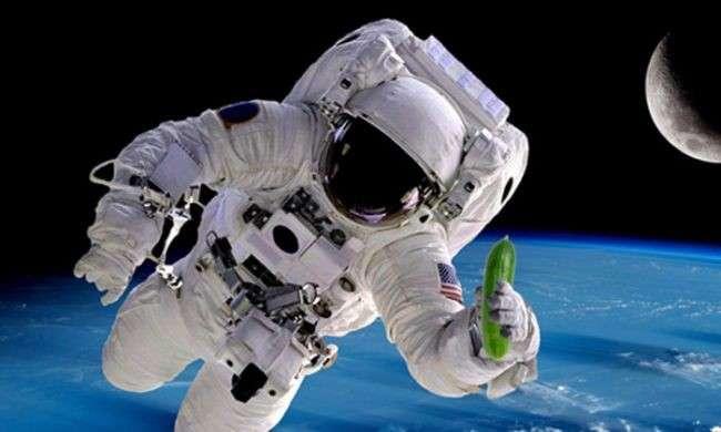 Космические огурцы – не дай себе засохнуть: как овощи помогут найти воду в космосе