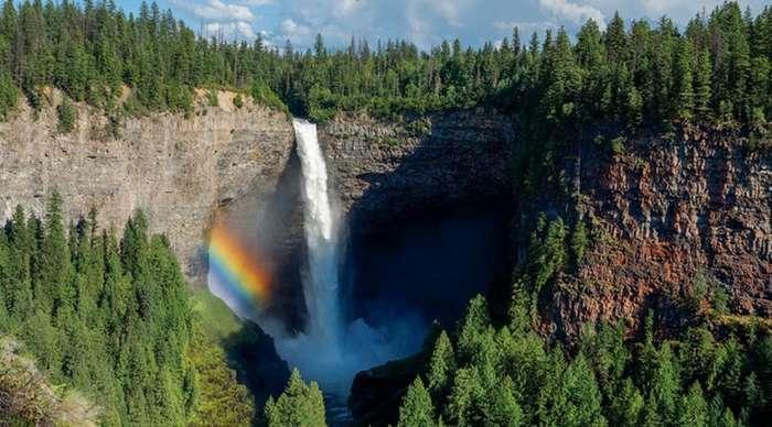 Любопытные чудеса природы