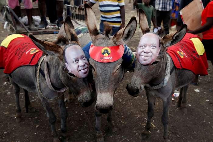 Фото, сделанные в Кении на этой неделе