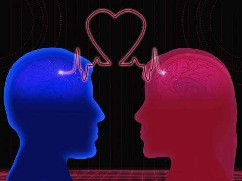 Что происходит с мозгом человека из-за любви