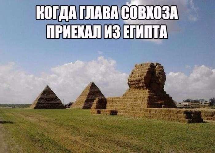 Сельский колорит: технологии будущего в российских деревнях