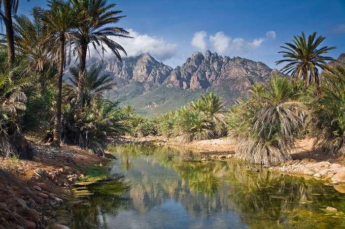 Фантастические пейзажи острова Сокотры