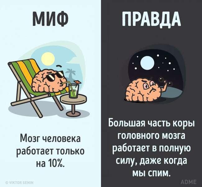 Миф или Правда ?