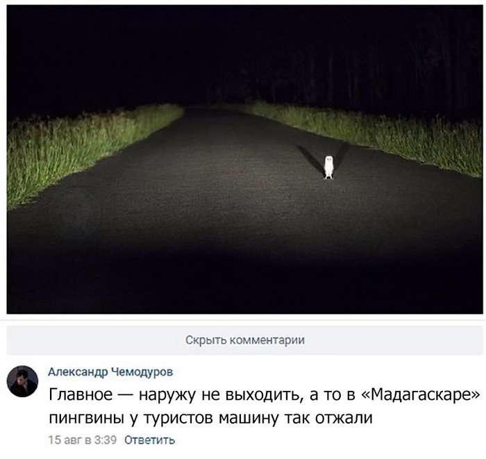 Юморинки на ночь глядя