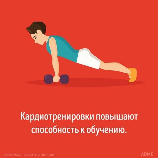 Как разные виды тренировок влияют на ваш мозг.