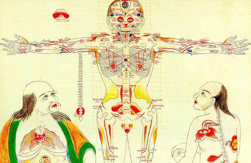 Тибетская медицина об истоках безумия