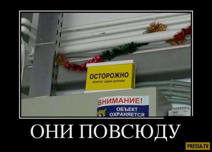 Вечерняя подборка демотиваторов 5.9.2017