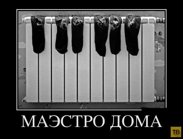 Демотиваторы 6.9.2017