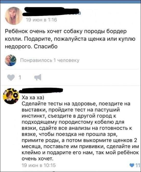 Смешные комментарии из социальных сетей.