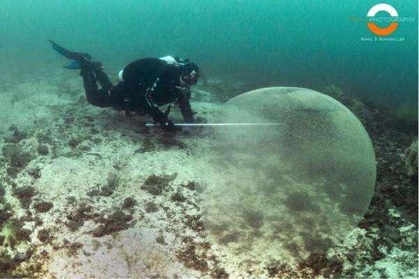 Гигантские, желеобразные сферы были замечены у западного побережья Норвегии