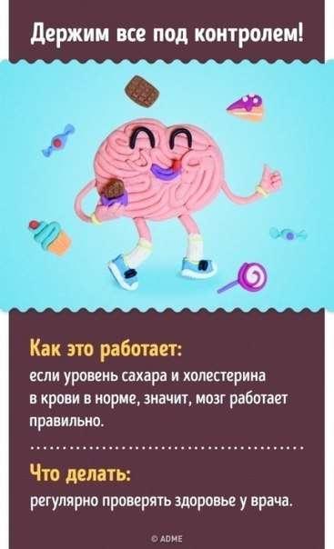 10 проверенных способов улучшить работу мозга