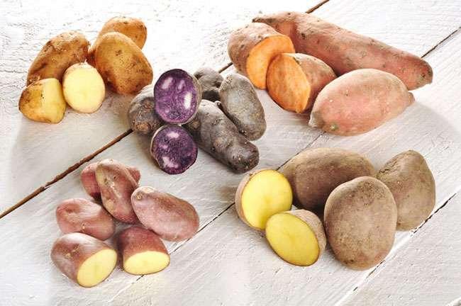 Выбирая картофель следует учитывать эти советы