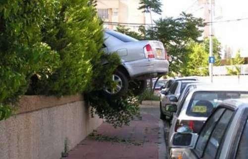 И смех и грех: гении парковки