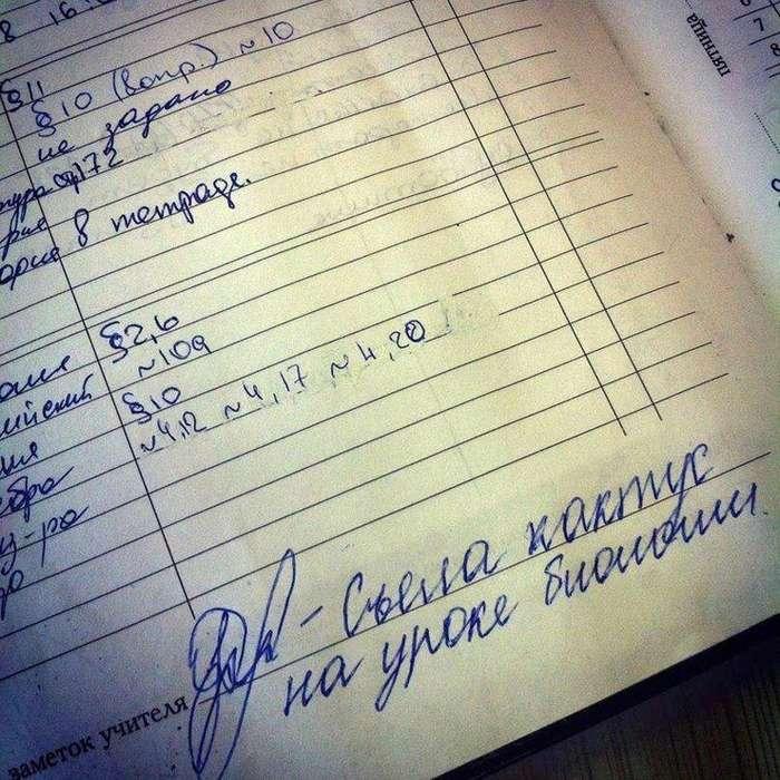 Топ-10 самых смешных замечаний в дневниках школьников