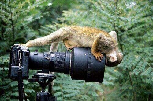 Подборка красивых фотографий