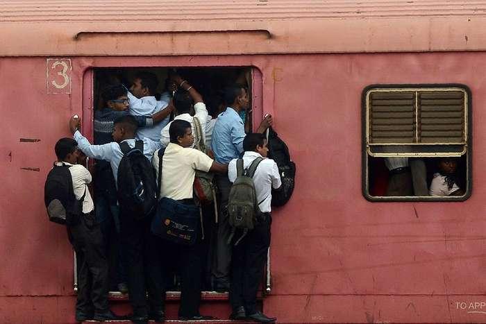 Интересные фото из Шри-Ланки
