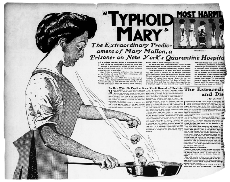 typhoid mary Her condition was accidentally caused by matt murdock, before he became daredevil he attacked a villain at the brothel where mary walker worked to his surprise, the girls working there.