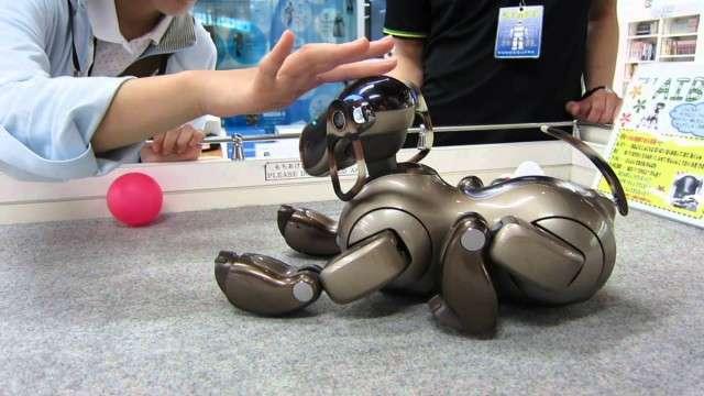 История игрушек: что произошло с развлечениями нашего детства и компаниями, которые ими занимались