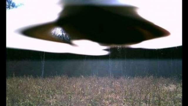 Забавные и страшные фотографии фотоловушек!